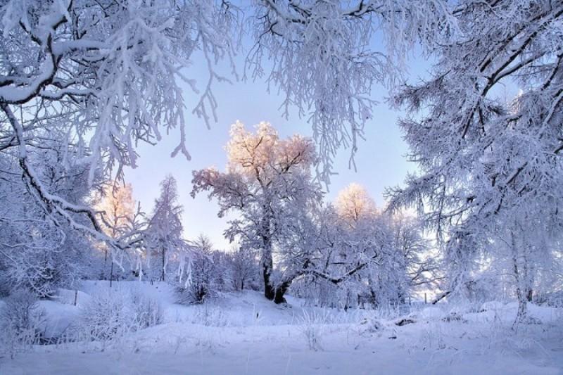 Занятие по развитию речи. Тема. Зима. - PDF Скачать Бесплатно | 533x800